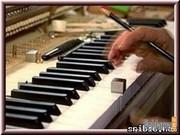 фортепианный настройщик 044 738 78 38