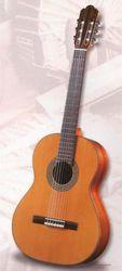 гитара классическая или акустическая